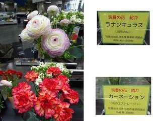 5県庁の花.jpg