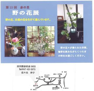 野の花展30年.jpg